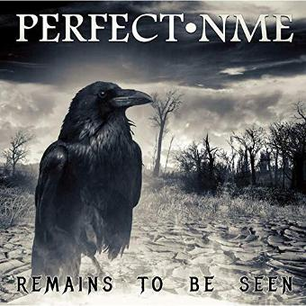 Perfect NME – Remains To Be Seen