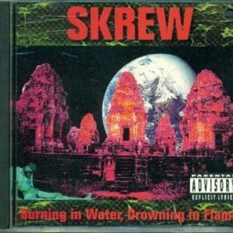 Skrew – Burning in Water, Drowning In Flame