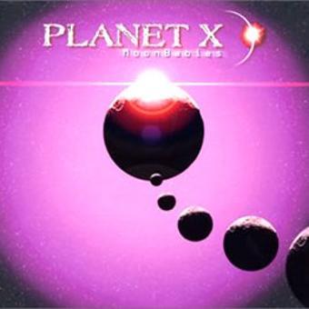 Planet X – Moonbabies