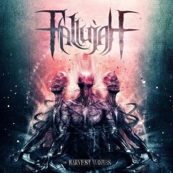 Fallujah – The Harvest Wombs